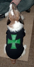 IRON CROSS DOG