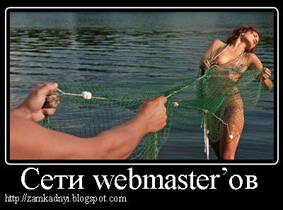 сети сайтов