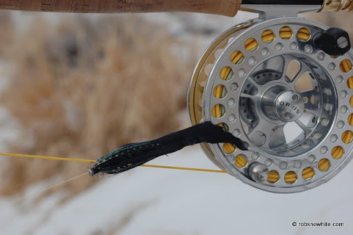 fly frozen to reel