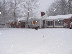 Our Winter Snow 2/2010