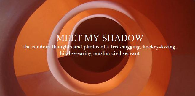 Meet My Shadow