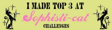 Challenge # 13