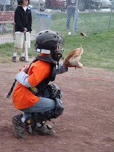Spring Baseball 2008
