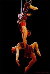 El amor y los trapecios