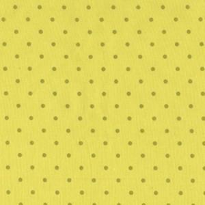[Kiwi+Dot.jpg]