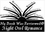 I was reviewed at Night Owl Romance!