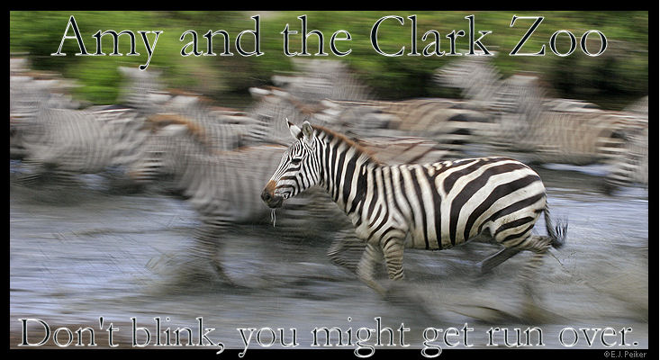 Amy and the Clark Zoo