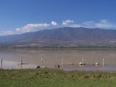 Laguna de Sayula