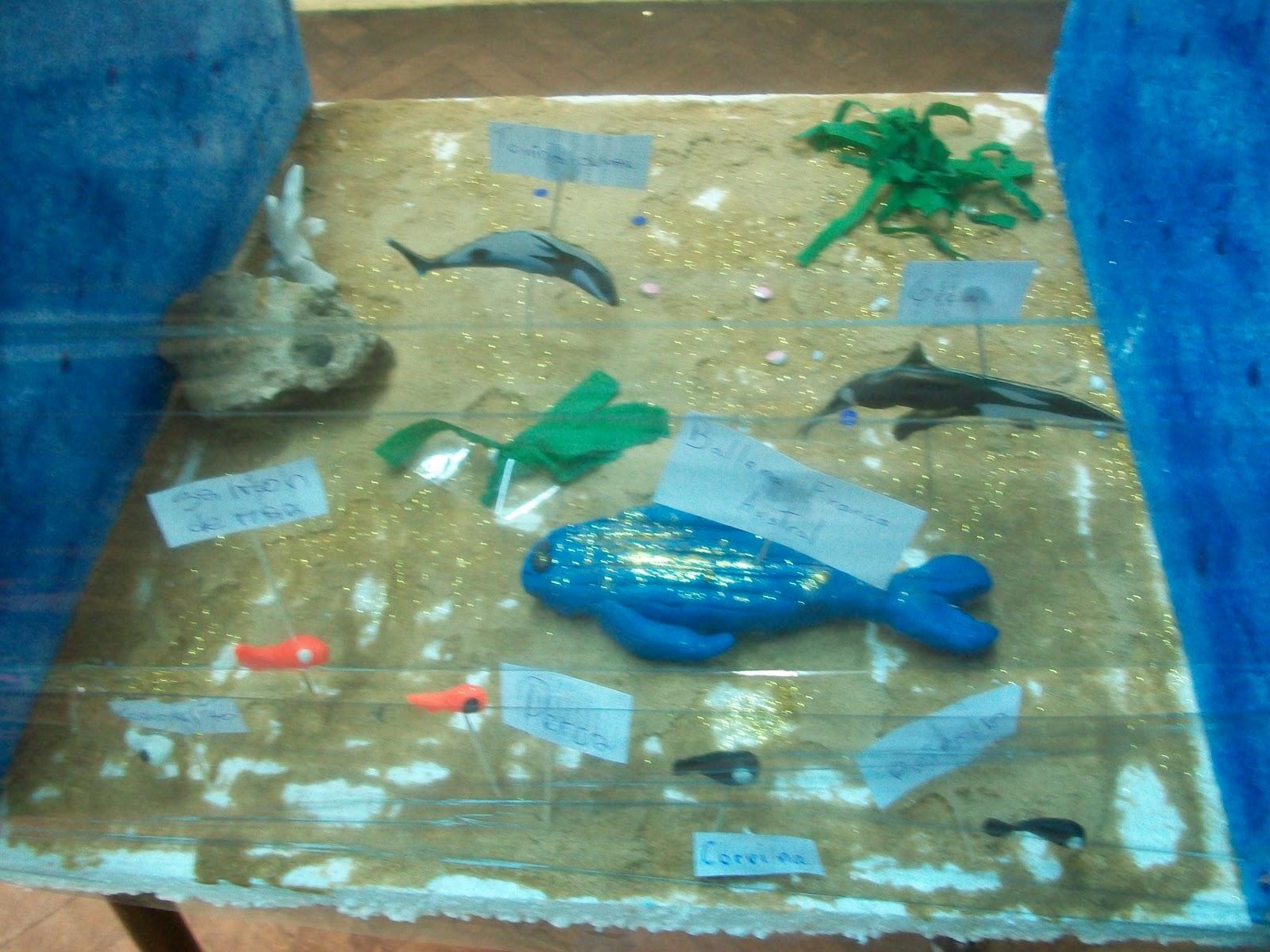 Maquetas De Ecosistemas Acuaticos Con Materiales De Reciclaje