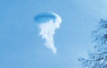 Jellyfish witness desciption of UFO signficant?