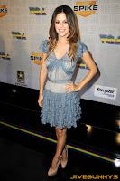 Rachel Bilson blue dress