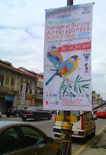 Fraser's Hill Bird race 2010 poster