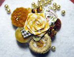 Hair Clips/Brooches
