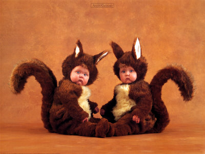 Anne Geddes 12 Days Of Christmas