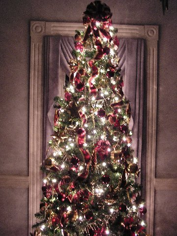 Kathy K Picture of Burgandy Tree