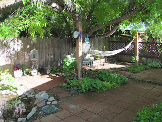 It is all shade garden.