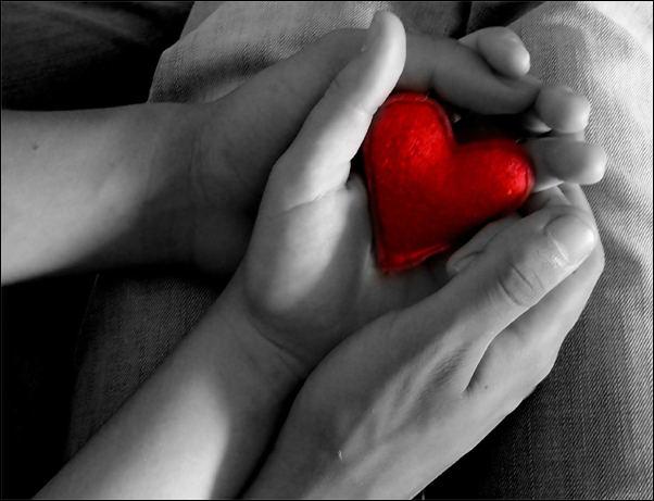 amore cuore. immagini d amore
