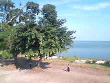 The landscape of Inongo