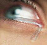 No es preciso llorar para describir una lágrima...