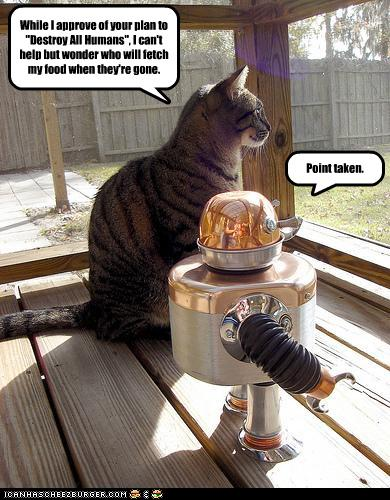 [cat+and+robot+loled.jpg]