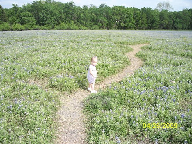 Maddy's first time to see Blue Bonnets