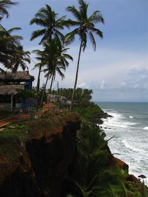 palmeras varkala