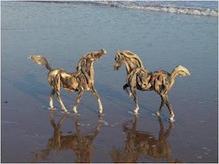 cavalos brincam à beira-mar