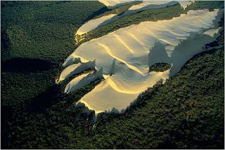 Dunas na ilha de Fraser, Australia