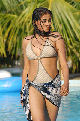 Labels South Actress In Bikini Picture Gallery