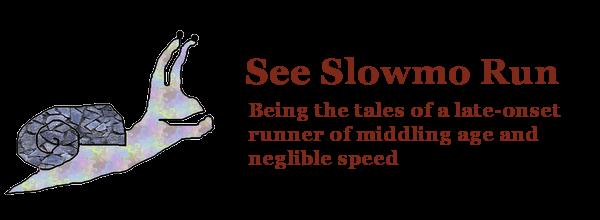 See Slowmo Run