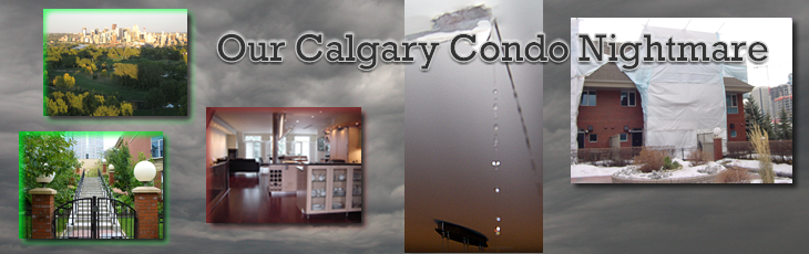 Calgary Condominium Nightmare - Lessons for all