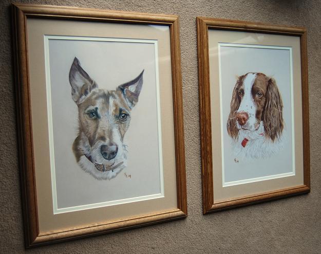[Snoop+and+Bodie+pet+portraits.JPG]