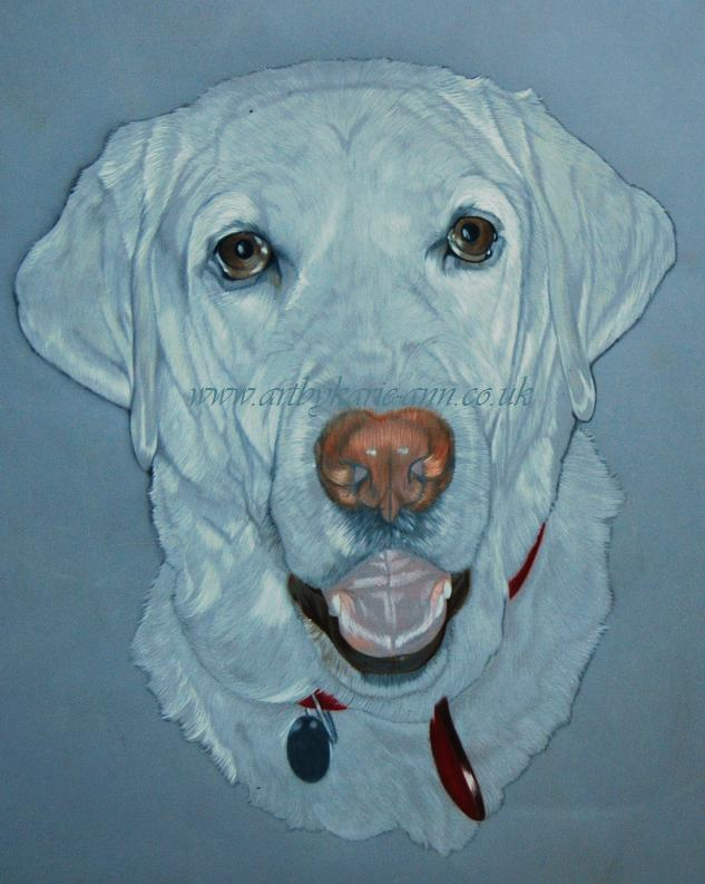 [dog portraits 27.JPG]