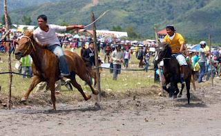 balapan kuda sumbawa