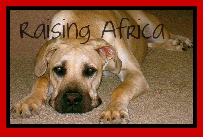 Raising Africa