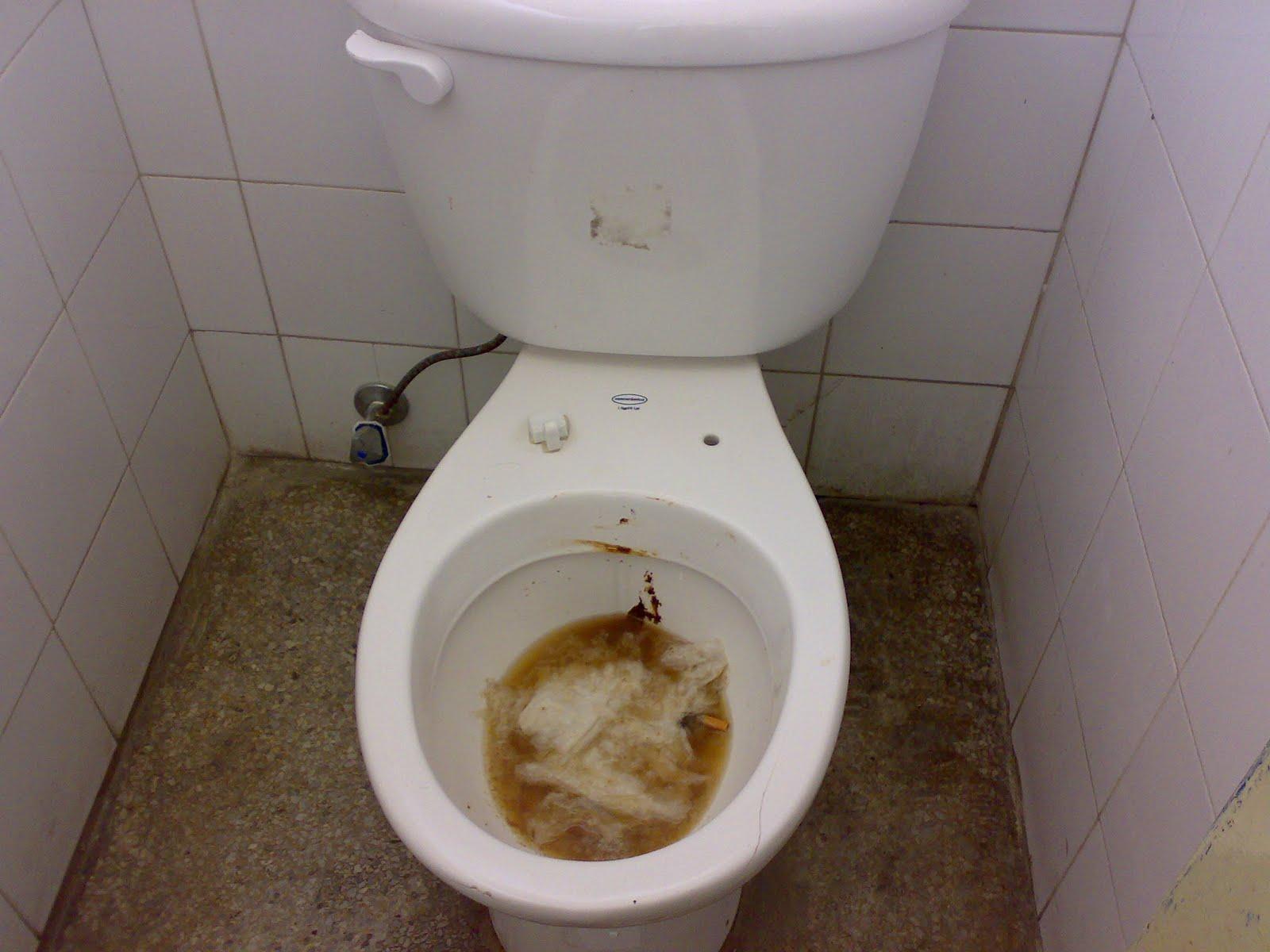 Imagenes De Un Baño Sucio:JunquitoSite: noviembre 2009