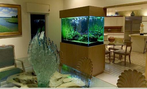 Praneetha Aquariums Aquariums