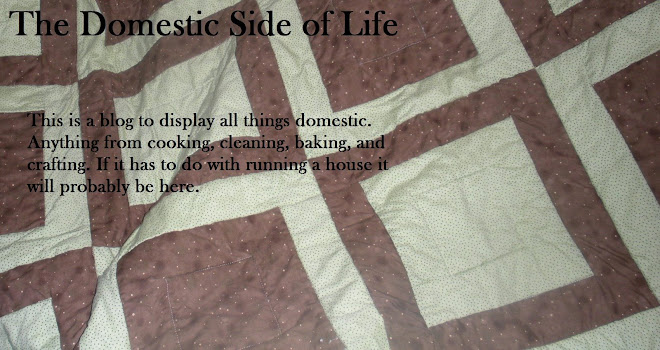 The Domestic Side of Life