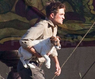 pattison adopta a un perro mundocotilleo