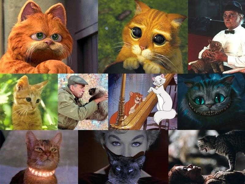 Ranking de El curioso mundo de los gatos 50