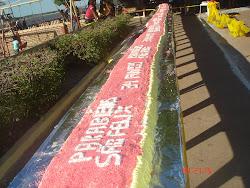 Aniversario de Sao Felix do Araguaia MT