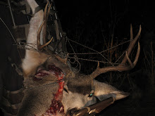 Wayne's deer