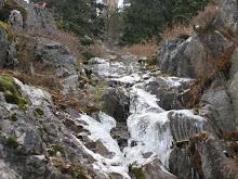 frozen springs