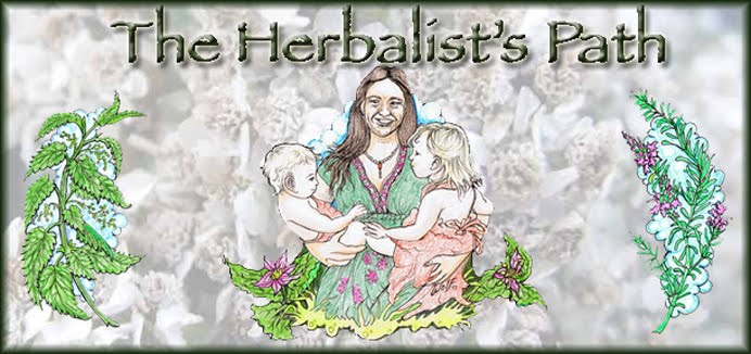 The Herbalist&#39;s Path
