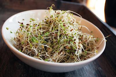 Oppskrift Bønnespirer Vegan Tapas Vegetartapas Meny Bean Sprouts Alfalfa Lime Dressing