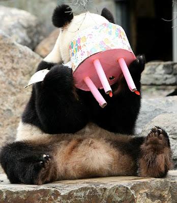 Oppskrift Veganmisjonen veganmat vegetarmat panda nom nom