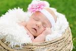 Addison Cherie