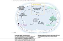 Cambio Climático, Desertificación y Pérdida de Biodiversidad.