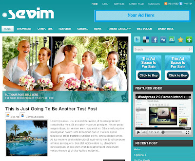 Sevim, professional Blogger Theme