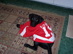 tucker is ready for some hockey